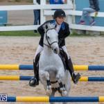 Bermuda Equestrian Federation Jumper Show, November 24 2018-0113