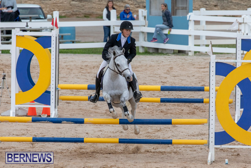 Bermuda-Equestrian-Federation-Jumper-Show-November-24-2018-0114