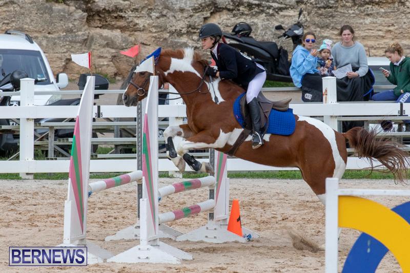 Bermuda-Equestrian-Federation-Jumper-Show-November-24-2018-0152