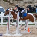 Bermuda Equestrian Federation Jumper Show, November 24 2018-0153