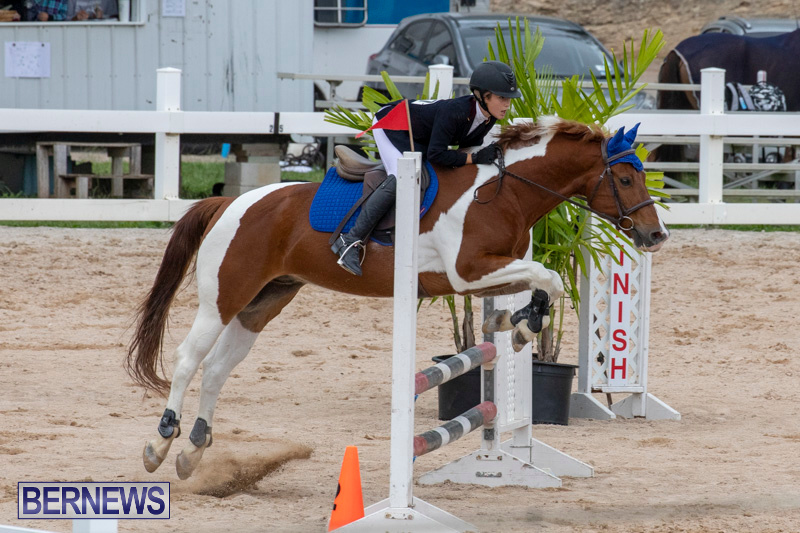 Bermuda-Equestrian-Federation-Jumper-Show-November-24-2018-0158