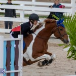 Bermuda Equestrian Federation Jumper Show, November 24 2018-0163
