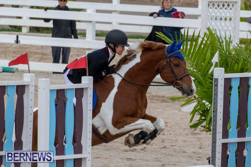 Bermuda-Equestrian-Federation-Jumper-Show-November-24-2018-0163
