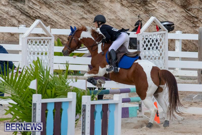 Bermuda-Equestrian-Federation-Jumper-Show-November-24-2018-0171