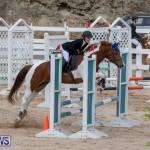 Bermuda Equestrian Federation Jumper Show, November 24 2018-0181