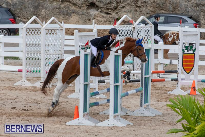 Bermuda-Equestrian-Federation-Jumper-Show-November-24-2018-0181