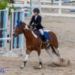 Bermuda Equestrian Federation Jumper Show, November 24 2018-0189