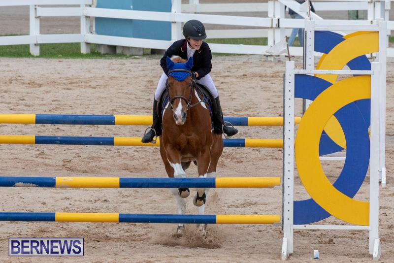 Bermuda-Equestrian-Federation-Jumper-Show-November-24-2018-0203