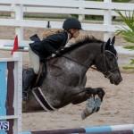 Bermuda Equestrian Federation Jumper Show, November 24 2018-0240