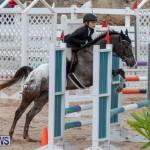 Bermuda Equestrian Federation Jumper Show, November 24 2018-0261