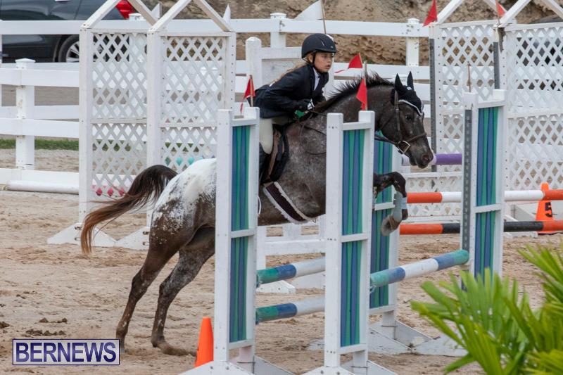 Bermuda-Equestrian-Federation-Jumper-Show-November-24-2018-0261