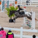 Bermuda Equestrian Federation Jumper Show, November 24 2018-0268