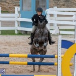 Bermuda Equestrian Federation Jumper Show, November 24 2018-0273