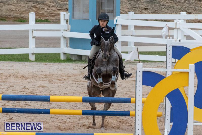 Bermuda-Equestrian-Federation-Jumper-Show-November-24-2018-0273