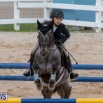 Bermuda Equestrian Federation Jumper Show, November 24 2018-0276