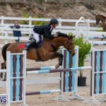 Bermuda Equestrian Federation Jumper Show, November 24 2018-9857