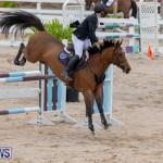 Bermuda Equestrian Federation Jumper Show, November 24 2018-9859