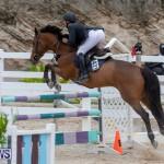 Bermuda Equestrian Federation Jumper Show, November 24 2018-9862