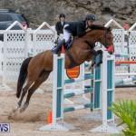 Bermuda Equestrian Federation Jumper Show, November 24 2018-9869