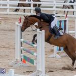 Bermuda Equestrian Federation Jumper Show, November 24 2018-9876