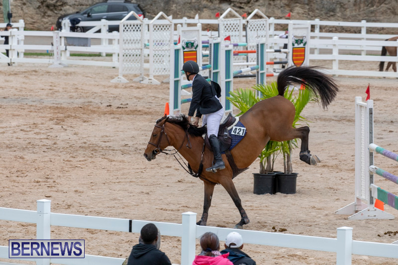 Bermuda-Equestrian-Federation-Jumper-Show-November-24-2018-9880