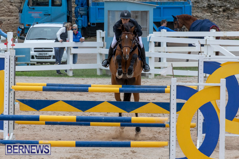 Bermuda-Equestrian-Federation-Jumper-Show-November-24-2018-9881