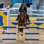 Bermuda Equestrian Federation Jumper Show, November 24 2018-9885