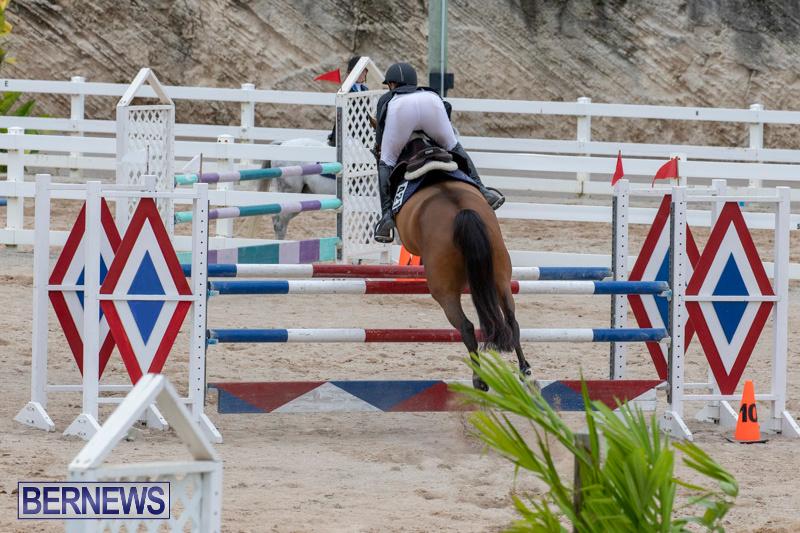 Bermuda-Equestrian-Federation-Jumper-Show-November-24-2018-9889