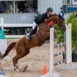 Bermuda Equestrian Federation Jumper Show, November 24 2018-9904