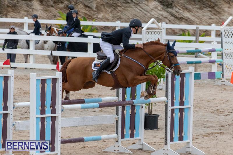 Bermuda-Equestrian-Federation-Jumper-Show-November-24-2018-9914