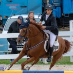 Bermuda Equestrian Federation Jumper Show, November 24 2018-9930