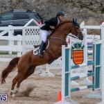 Bermuda Equestrian Federation Jumper Show, November 24 2018-9932