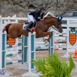 Bermuda Equestrian Federation Jumper Show, November 24 2018-9934