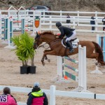 Bermuda Equestrian Federation Jumper Show, November 24 2018-9940