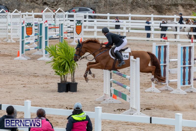 Bermuda-Equestrian-Federation-Jumper-Show-November-24-2018-9940