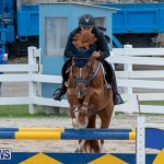 Bermuda Equestrian Federation Jumper Show, November 24 2018-9946