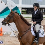 Bermuda Equestrian Federation Jumper Show, November 24 2018-9988