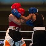 Bermuda Redemption Boxing Nov 2018 JM (10)