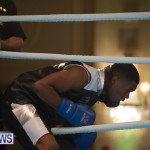 Bermuda Redemption Boxing Nov 2018 JM (103)