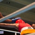 Bermuda Redemption Boxing Nov 2018 JM (11)