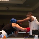 Bermuda Redemption Boxing Nov 2018 JM (112)
