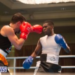 Bermuda Redemption Boxing Nov 2018 JM (119)