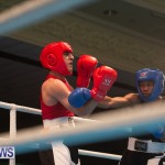 Bermuda Redemption Boxing Nov 2018 JM (12)