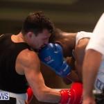 Bermuda Redemption Boxing Nov 2018 JM (122)
