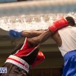 Bermuda Redemption Boxing Nov 2018 JM (139)