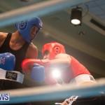 Bermuda Redemption Boxing Nov 2018 JM (14)