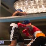 Bermuda Redemption Boxing Nov 2018 JM (15)