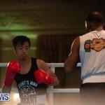 Bermuda Redemption Boxing Nov 2018 JM (157)