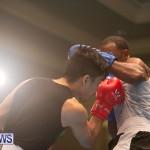 Bermuda Redemption Boxing Nov 2018 JM (158)
