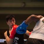 Bermuda Redemption Boxing Nov 2018 JM (166)